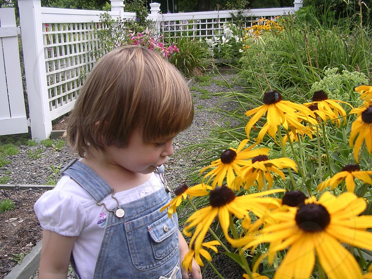 Toddler girl smelling flowers in the garden photo