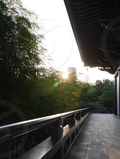 増上寺 / Zojoji (Temple in Japan) photo