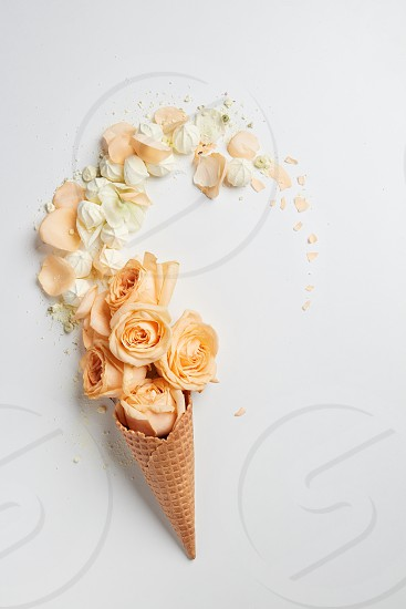 Waffle cone with composition of flowers on a white background  flat lay photo