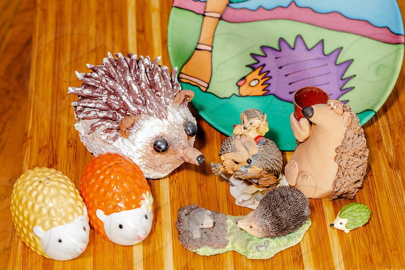 Hedgehog Collection photo