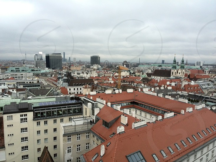 A small view of Vienna from Stephan Dome photo