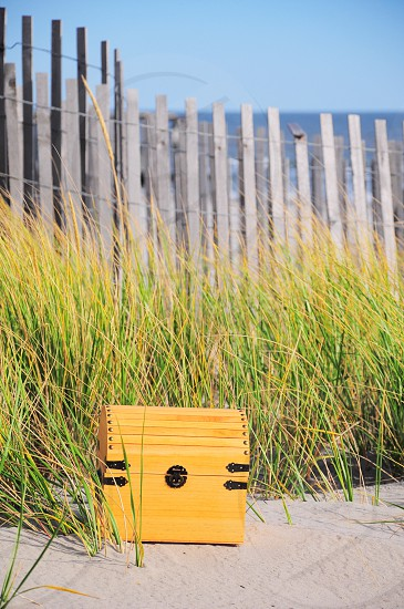 yellow and black wooden trunk photo