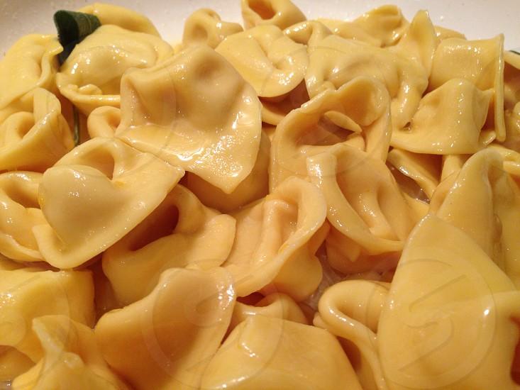 tortellini pasta photo
