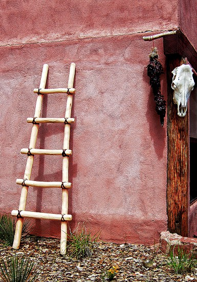 Santa Fe still life with ladder leaning on a pink adobe wall chile peppers and a cows skull hanging nearby. photo