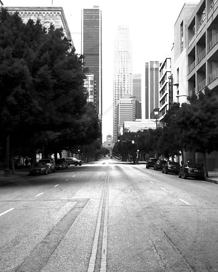 DowntownLA Streets Empty Streets  photo