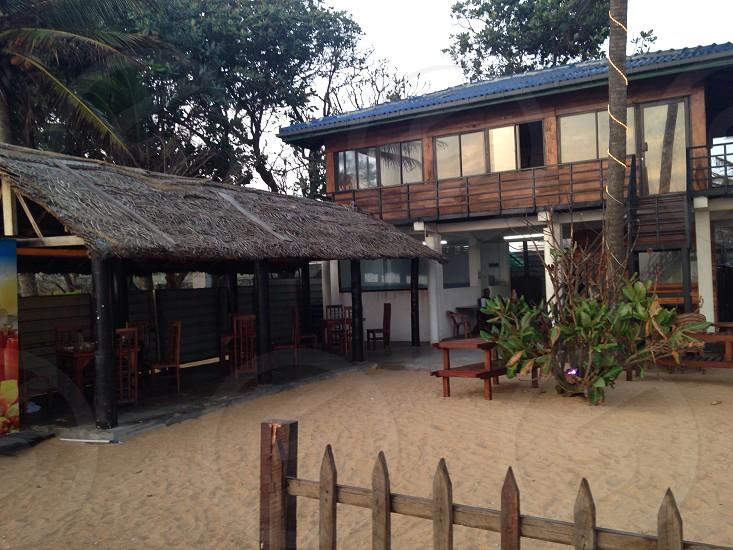 green coconut palm tree near hut photo