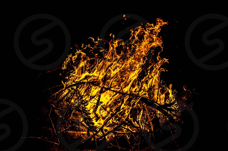 red flame burning on firewood photo