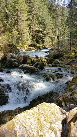 opal creek oregon hiking running river photo