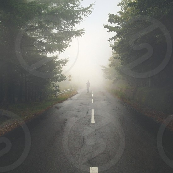 person walking on road with fogs photo