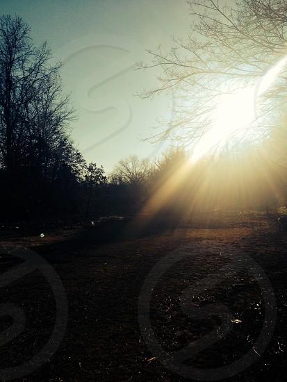 Sun beauty life photo