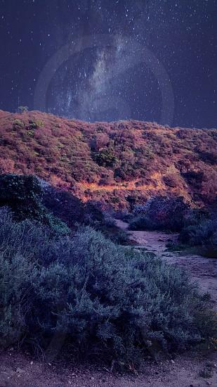 hike trail hill hiking greenery plants photo