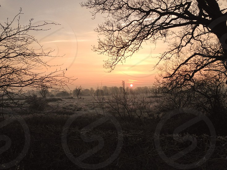 Frosty morning weather sunrise fields trees country morning  photo