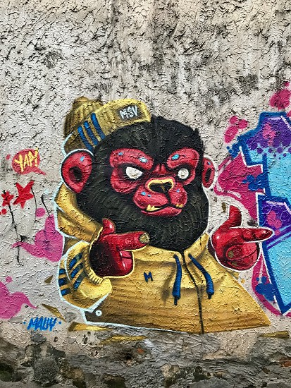 Outdoor day colour vertical portrait Chiang Mai Thailand Asia Asian East Eastern Far East Orient travel tourism tourist wanderlust city Graffiti street art colourful bright vivid vibrant monkey cartoon animation fun silly photo