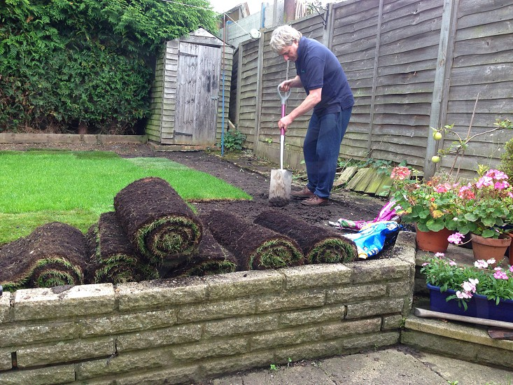 Man with shovel laying sod in his yard photo