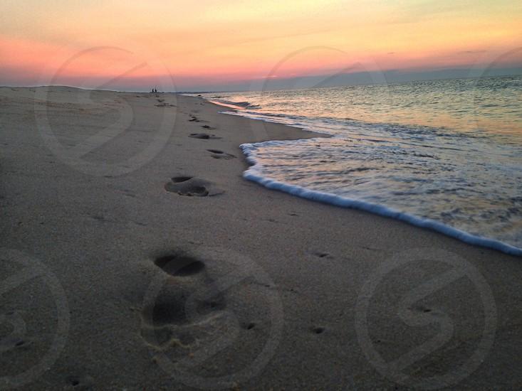 footprints in sand on beach photo