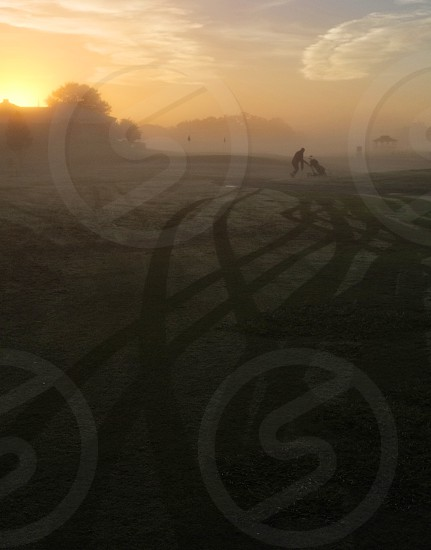 Golf course in early morning with cart tracks in the dew. photo