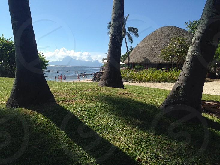 Tahiti beach photo