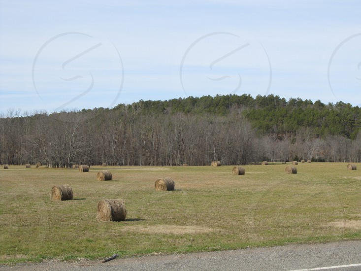 Hay in a field next to a hill photo