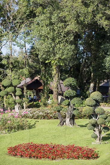 the Doi Tung Royal Villa at the village of  Doi Tung north of the city of Chiang Rai in North Thailand. photo