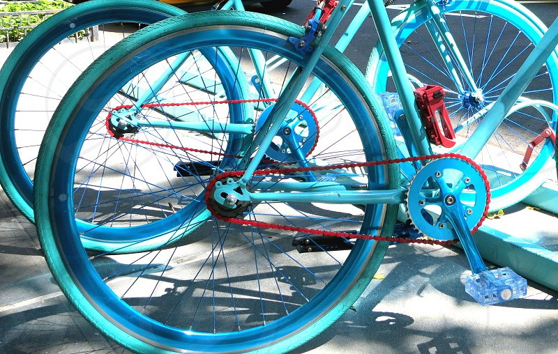 Colorful bicycles photo
