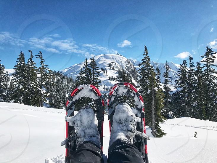 Snowshoe season photo