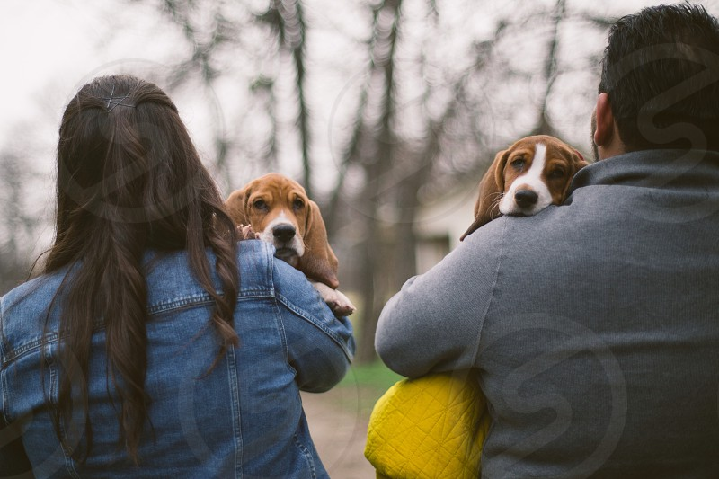 man and woman carrying beagle photo