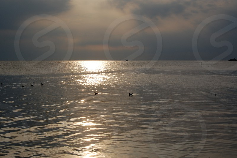 The sea - early evening photo