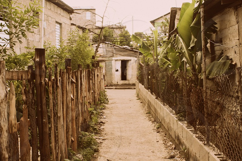 """Fenced"" A Dominican city sidewalk is lines with plants and walls. photo"
