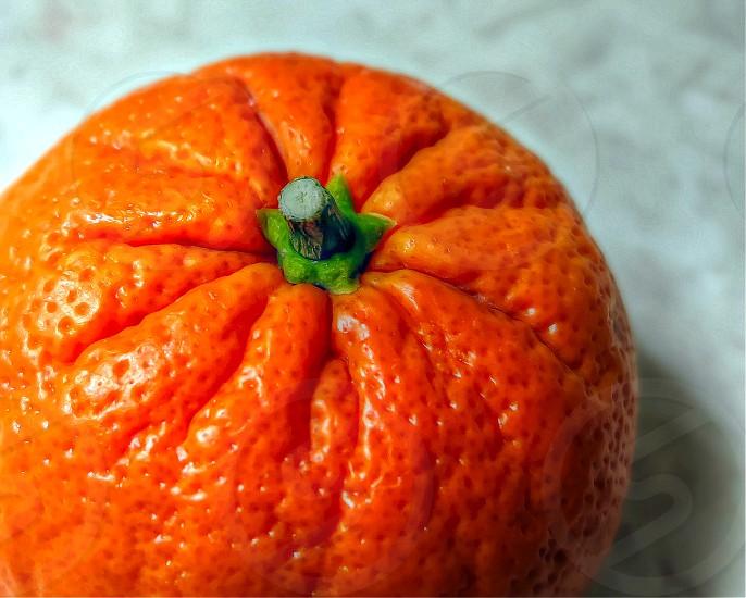 Fresh Orange photo