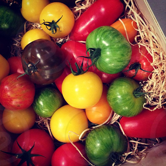 Tomatoes every colour vegetables photo