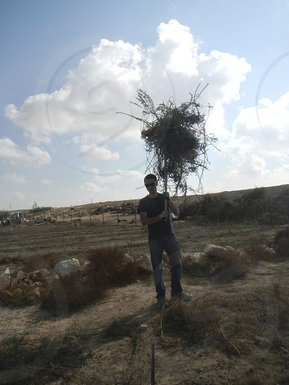 Clearing a farm in the south of Israel photo