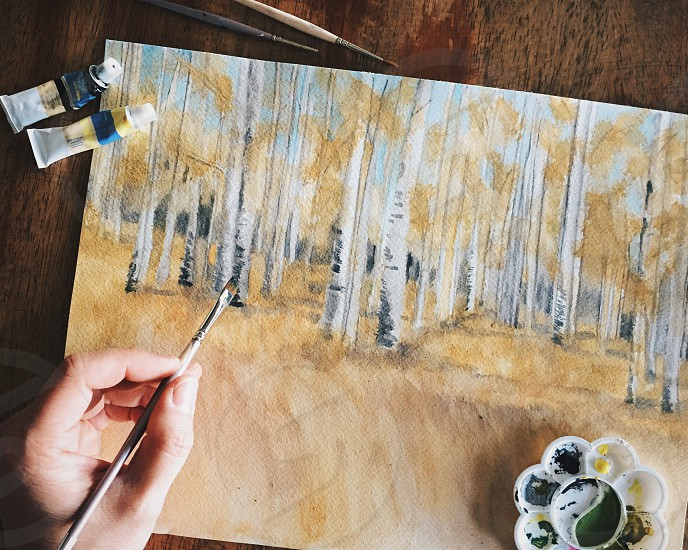 person painting forest photo
