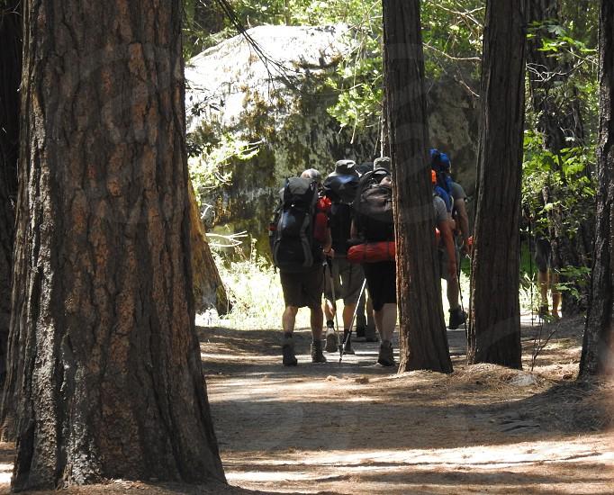 Hiking The Trails           photo