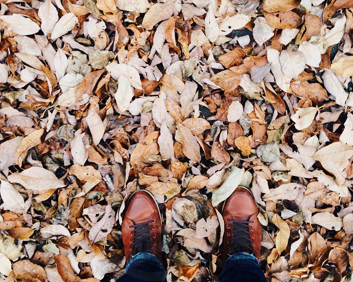 person wearing brown leather boots standing on brown leaves during daytime photo