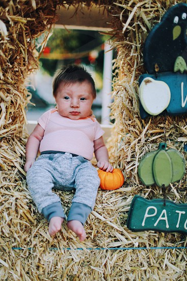 Pumpkin patch; baby; fall; autumn  photo