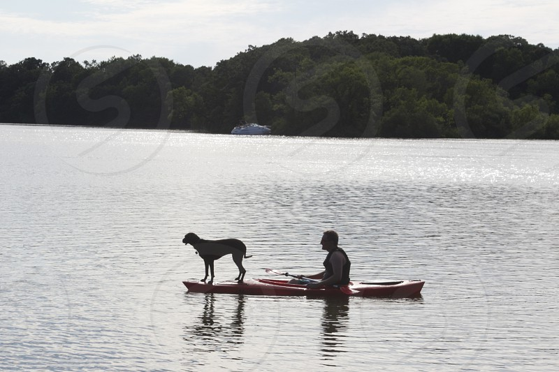 man on rowing boat and a dog  photo