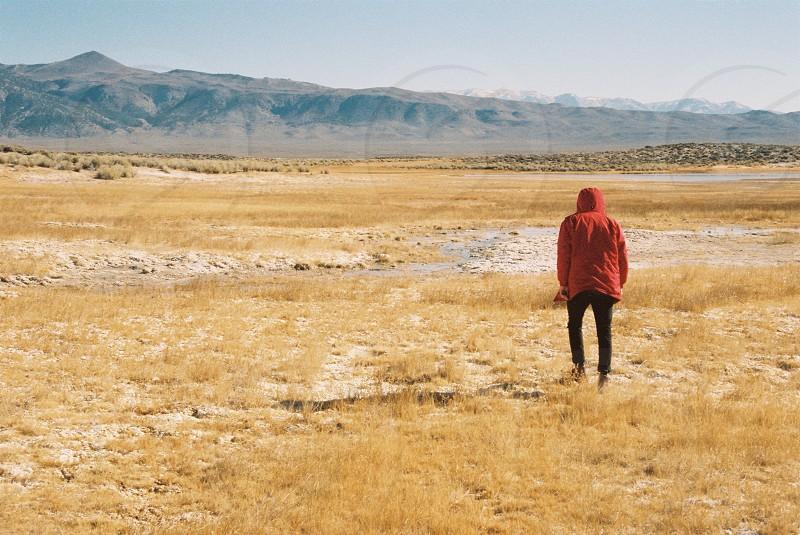 men's red hoodie  photo