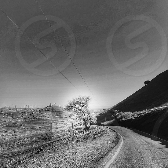 Pattersonpass black and white onelane trees mountains windmills  photo