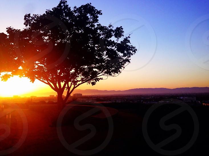 Bluff sunset at Loyola Marymount University in Los Angeles CA photo