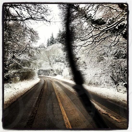 British winter photo