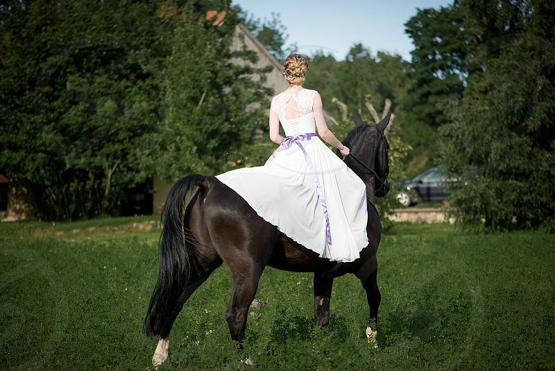 Beautiful bridewhite  wedding dressbridal bouquetbrown horse  photo