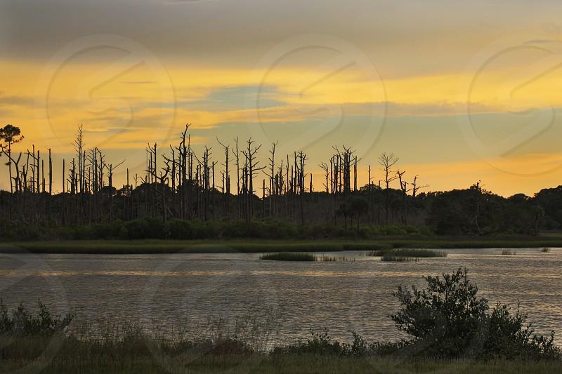 Sunset St. Augustine Marsh St. John's County photo