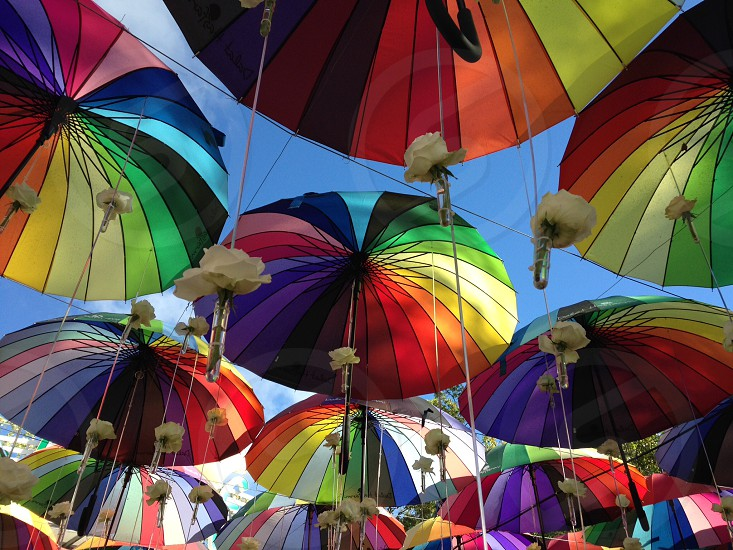 Rainbow umbrellas umbrella bright happy freedom sky flowers festival decor photo