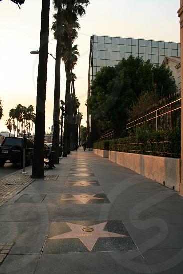 stars on gray tiles pavement photo
