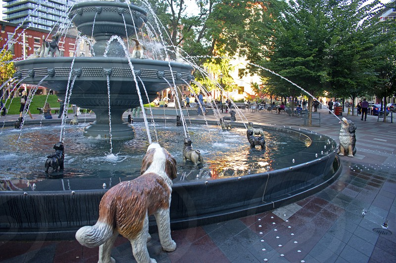 Unique fountain surrounded by stone canine sculptures in Berczy Park in downtown Toronto Canada photo