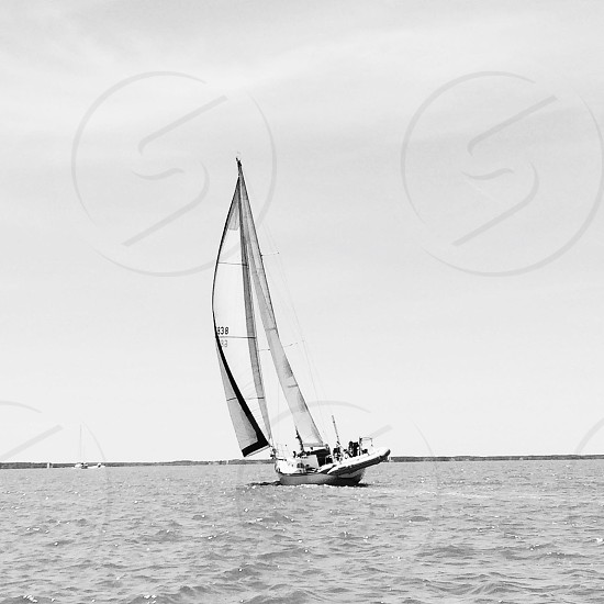 Sailing in Maryland photo