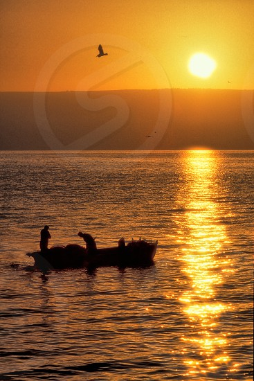 Fishing in the Morning Sunrise on the Sea of Galilee Israel. photo
