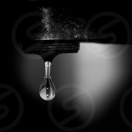 gray scale water drop photo