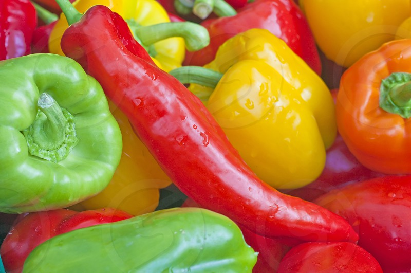 Paprika in different colors photo