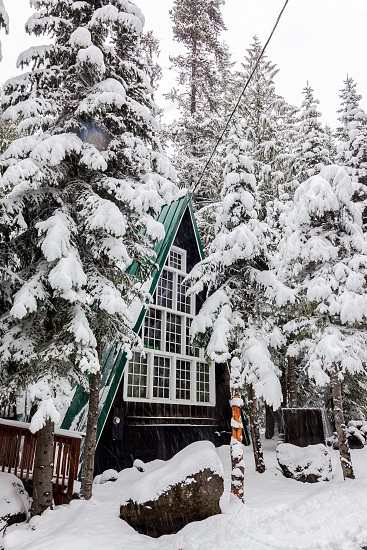 house covered with snow during daytime photo